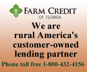 farm-credit-of-florida-300x