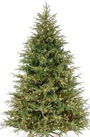 christmas-tree-real