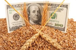 farm income