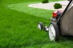 Lawn mower-grass