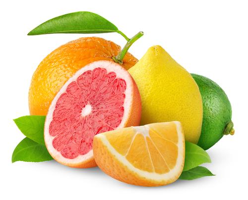 citrus crop forecast
