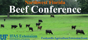 uf-nw-fl-beef-conference