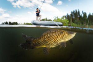 fisherman with Carp-2 fishing