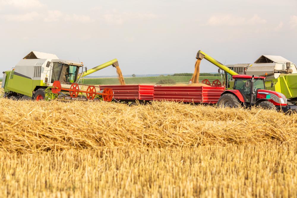 wheat import tax