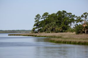 Apalachicola Bay water wars dunn