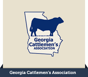 georgia ag issues summit