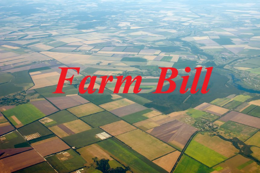 farm bill peterson