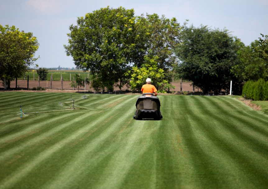Best time to mow southeast agnet for How often should you mow your lawn