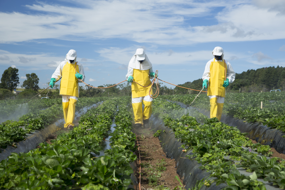 pesticides 2018-7-30  other pesticides, which name includes –cide as a suffix, such as ovicide, larvicide or adulticide, designate substances specifically intended for destroying insects at.