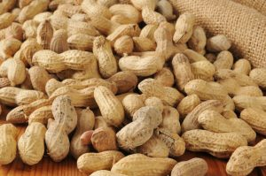 peanut crop update