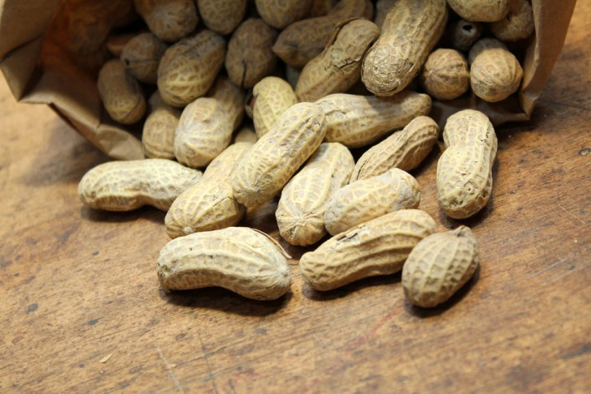 peanut production