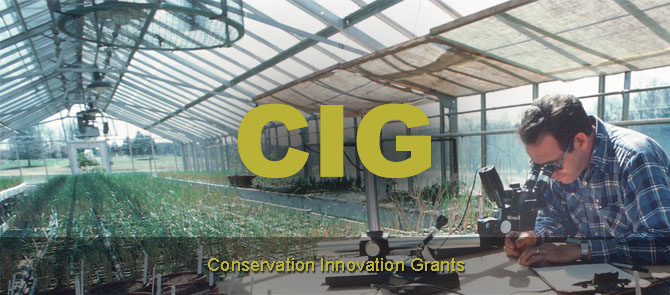 conservation innovation
