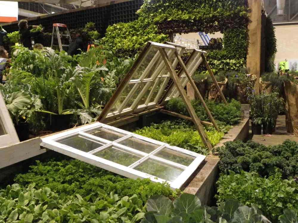 What is a Cold Frame? Why You Need One - Southeast AgNET