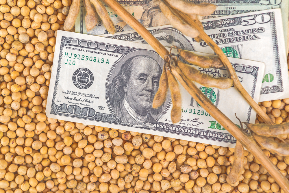 soybean farmers