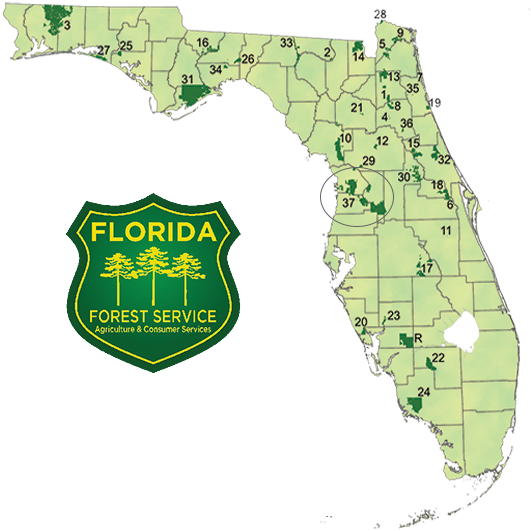 Complete Map Of Florida.Florida Commissioner S Spotlight State Forests Southeast Agnet