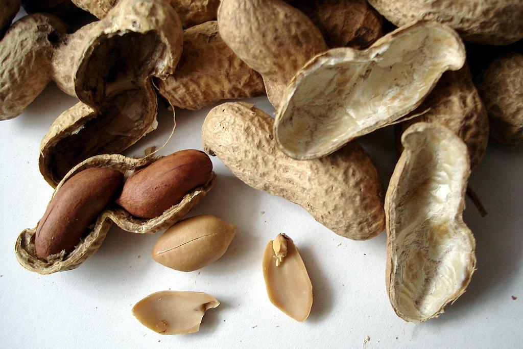 peanut calendar